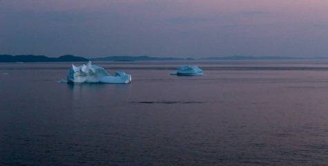 Icebergs at sunset in Twillingate
