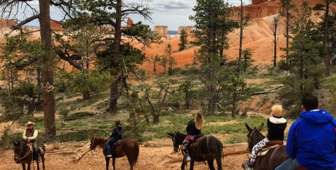 horseback riding in bryce canyon